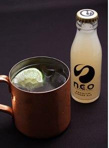 ne04-ginger-ale